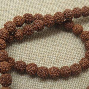 Perles graine Rudraksha Bodhi 7mm – lot de 20