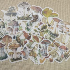 Stickers automne champignon papier autocollant scrapbooking – 30pcs